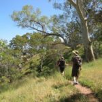 Walking Federation of South Australia