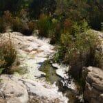 The Pretty Pools - Weetootla