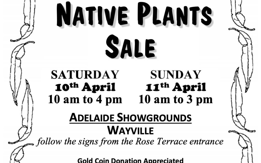 Australian Native Plant Sale coming up! 10 – 11th April at the Wayville Showgrounds – for the diary!