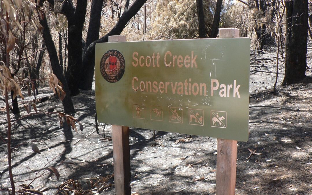 Scott Creek Conservation Park fire: a message from Environment Minister David Speirs