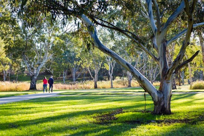 Green Adelaide's Grass Roots Grants for a 'cooler, greener, wilder Adeaide close on the 9th June – don't miss out!