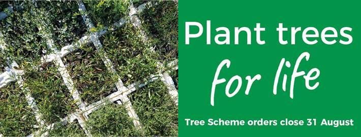 Want something to look forward to? Order some plants from Trees for Life for your next planting project!