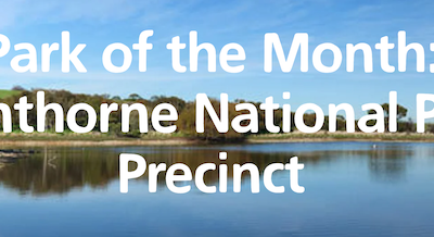 This is a great month to explore Glenthorne National Park , with lots of Park of the  Month activities!